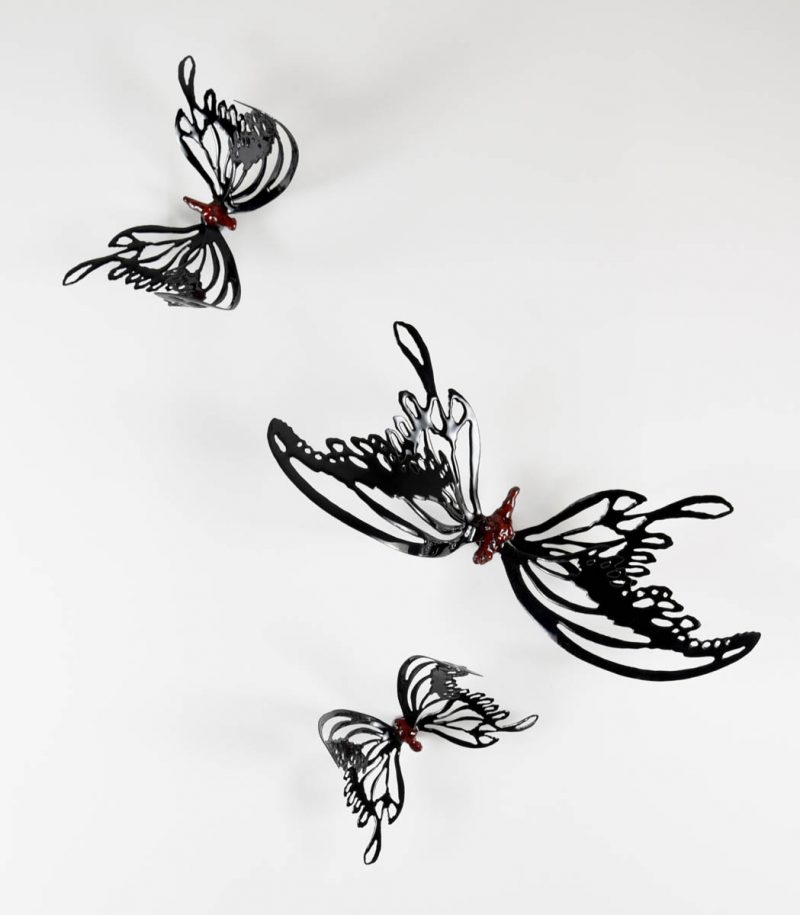 MINA BUTTERFLIES Color Black with Red Body group, Chrisite Hackler